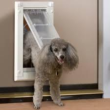 Patio Pacific Pet Door Doggy Doors U0026 Dog Door Best Dog Door For Sliding Glass Door Utah