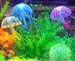 aquarium fish tank simulation landscaping background luminous