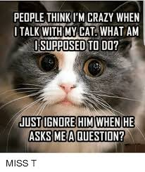 Memes About Crazy People - people think i m crazy when i talk with my cat what am supposed to