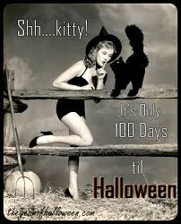 halloween kitty 100 days and counting u2026