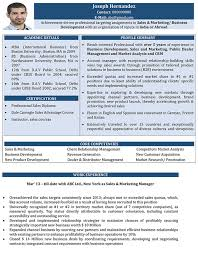 Sales Sample Resume by Sales And Marketing Cv Format U2013 Sales And Marketing Resume Sample
