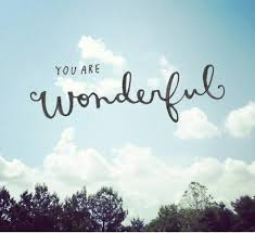 you are wonderful picture quotes