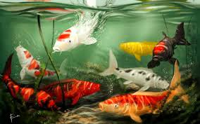 koi free live wallpaper apk live koi wallpaper