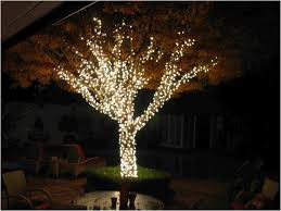 Solar String Lights Outdoor Patio Backyard Backyard String Lights Fearsome Outdoor Solar String