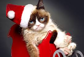 Grumpy Cat Memes Christmas - there s a grumpy cat christmas movie and it s actually pretty