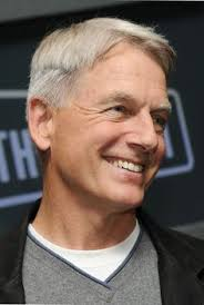 whats the gibbs haircut about in ncis image detail for what would you do with a night to yourself 37