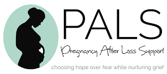 home pregnancy after loss support