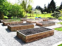 Backyard Raised Garden Ideas by Garden Collection Idea For Your Home Gallery And Home Garden