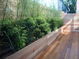 decking material options u2014 staghorn nyc