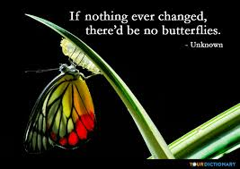if nothing changed there d be no butterflies unknown quote
