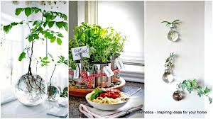 small indoor garden ideas 24 of the most beautiful ideas on indoor mini garden to collect