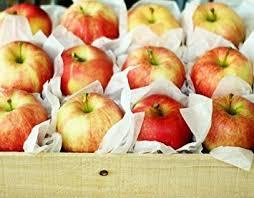 Fruit Gifts Amazon Com 6 Lbs Honeycrisp Apples Gift Box Gourmet Fruit