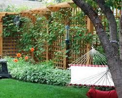 Trellis Garden Ideas Trellises Garden Extremely Ideas Garden Trellis Design Garden