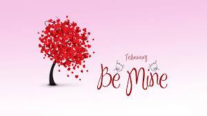 valentine flowerphy satin valentine red flowers rose love