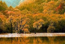 imagenes de otoño para fondo de escritorio fondo escritorio paisaje lago en otoño