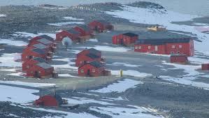 imagenes de la antartida la antártida argentina más caliente registran el día más cálido de