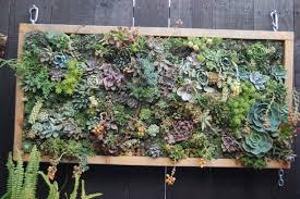 living room succulent wall art how to make vertical wall art