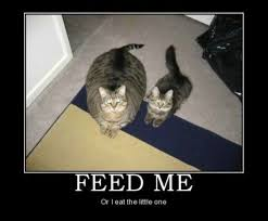 Feed Me Meme - feed me or i eat the little one weknowmemes