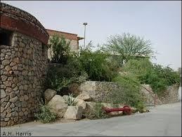 105 best el paso images on pinterest landscaping landscaping