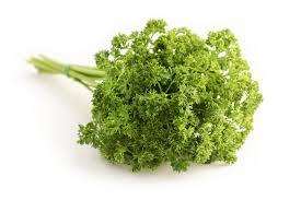 herbe cuisine images gratuites aliments herbe produire légume coriandre