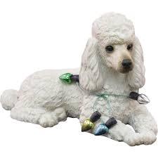 sandicast white poodle wearing lights