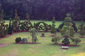 Yew Topiary - 9 of the most beautiful topiary gardens around the world green