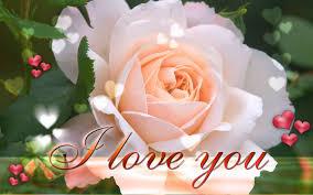 i love you beautiful flowers wallpaper