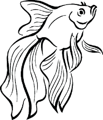 free fish coloring pages for adults bass small printable rainbow