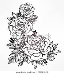 vintage floral highly detailed hand drawn rose flower stem with