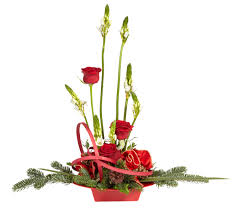 holiday flowers will stay tall and healthy in a red oasis