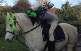 Horse Rider Halloween Costume Halloween Horse Costumes Ideas 2015
