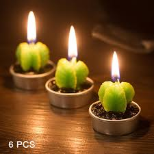 cactus home decor candles home decor cool candles home decor home design ideas