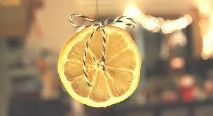 diy dried oranges lemons mandarins made by anulka