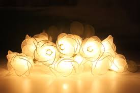 White flower string lights for party and decoration 20 bulbs