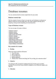 Sample Sql Developer Resume by Sample Sql Developer Resume Free Resume Example And Writing Download