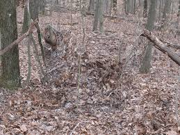 Reflective Deer Blind Gost Blinds Com Pictures To Pin On Pinterest Pinsdaddy
