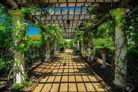 garden lattice walkway with stone pavers and vine flowers