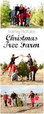 christmas tree farm family pictures with buffalo plaid family