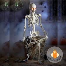 poseable skeleton 5 ft life size hanging halloween prop decoration