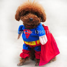Chihuahua Halloween Costume Aliexpress Buy Funny Dog Clothes Halloween Costume Puppy