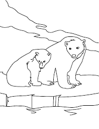 polar bear coloring pages print coloringstar