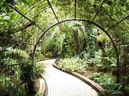 indoor garden grow tents gardening ideas