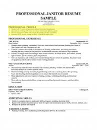 Janitorial Resume Examples by Download Sample Profile Summary For Resume Haadyaooverbayresort Com