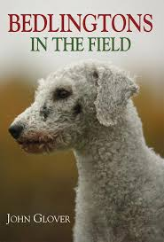 brushing a bedlington terrier best 10 banned dog breeds uk ideas on pinterest banned dogs uk