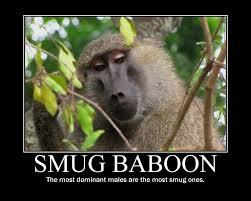Baboon Meme - smug baboon by tricky93 on deviantart