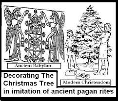 the chistmas tree and ancient pagan traditions