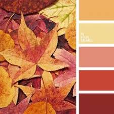 Burnt Orange Colour by Color Palette Burnt Orange Tangerine And Sand If You Like Our