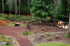 Shady Backyard Landscaping Ideas Landscaping Ideas For Wooded Areas Best 25 Wooded Backyard