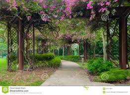 Flower Tunnel In Public Park Stock Image Image 67471867