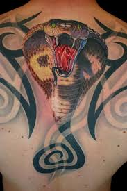 best 25 cobra tattoo ideas on pinterest king cobra tattoo